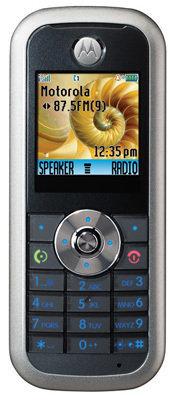Motorola W213